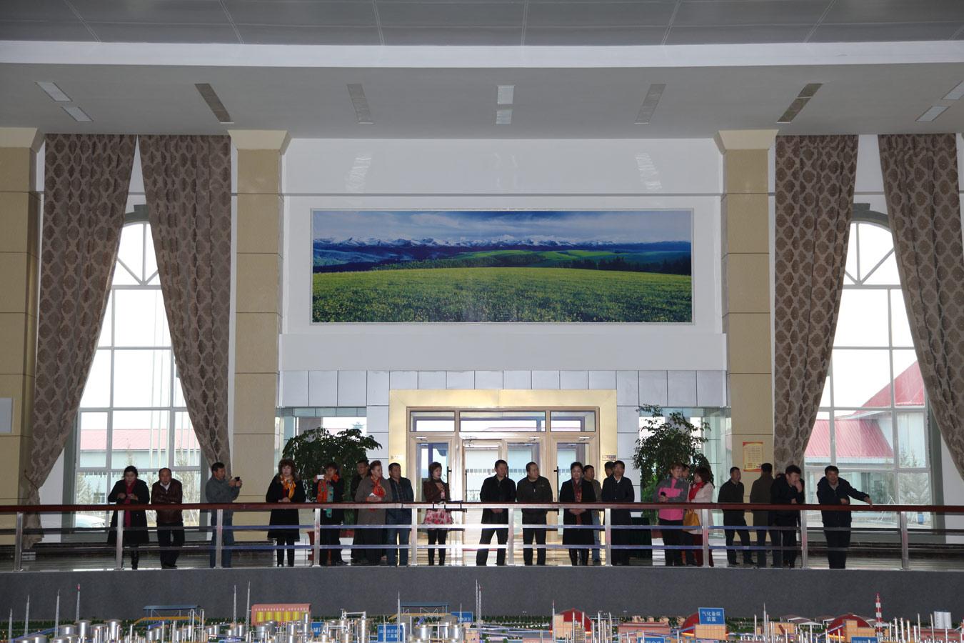 全国,新疆人大代表视察组莅临新疆集团和丰公司参观指导工作